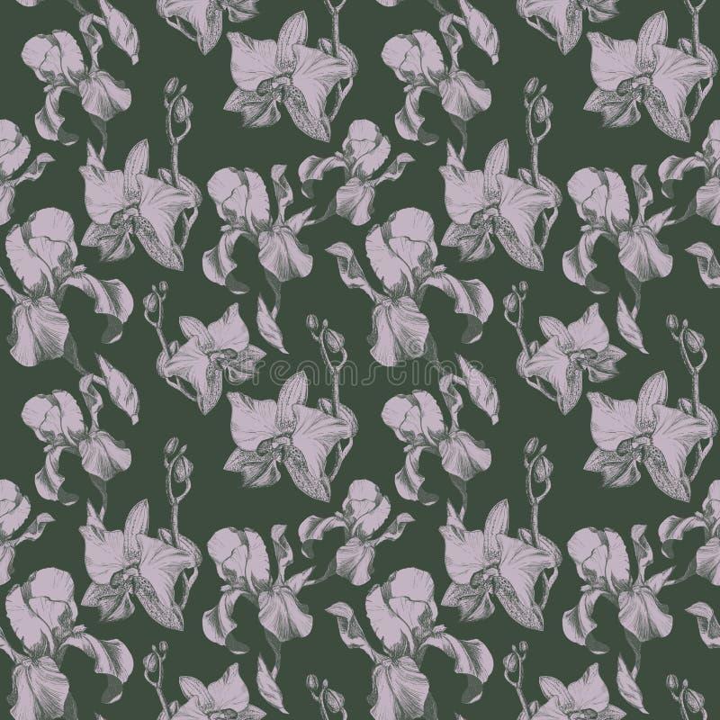 Kwiecisty bezszwowy wzór z ręka rysującym atramentu irysem i storczykowi kwiaty na pyle zieleniejemy tło Kwiaty uszeregowywający  royalty ilustracja