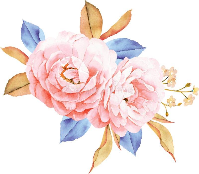 Kwiecisty bukiet róże, błękitów liście, gałąź na bielu ilustracja wektor
