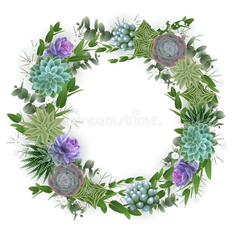Kwiecisty karciany szablon z tłustoszowatymi roślinami royalty ilustracja