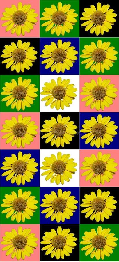 Kwiecisty kolorowy deseniowy tło fotografia royalty free