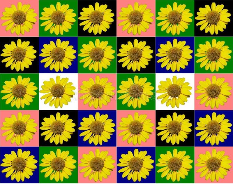 Kwiecisty kolorowy deseniowy tło zdjęcie royalty free
