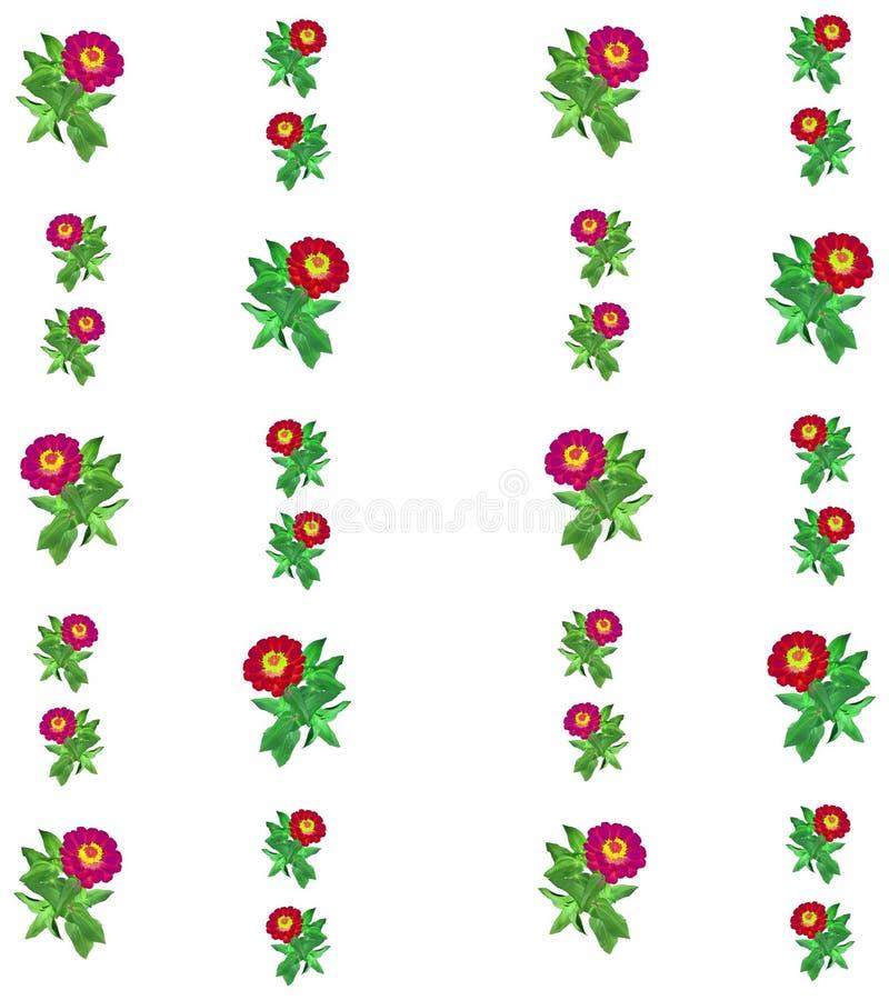 Kwiecisty kolorowy deseniowy tło obraz royalty free