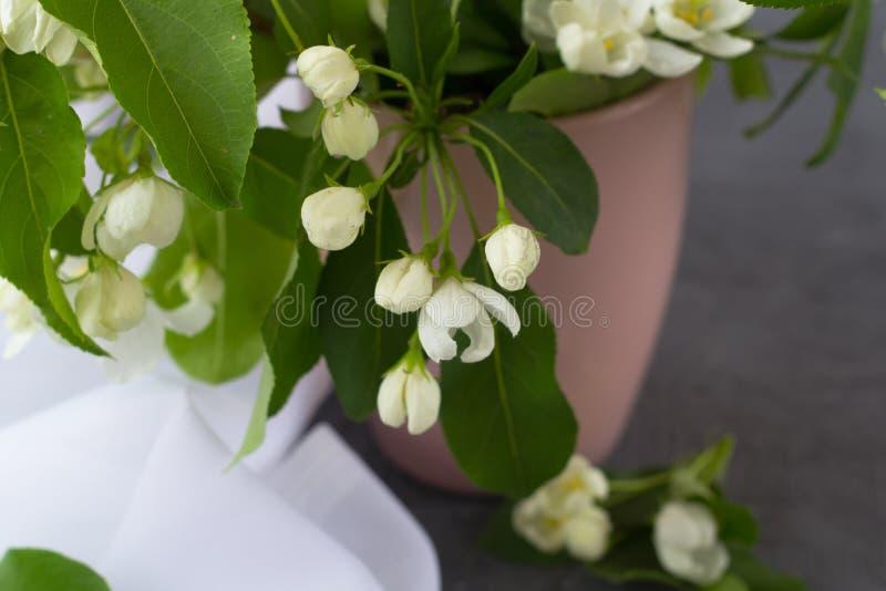Kwiecisty skład na wiosna słonecznym dniu obrazy stock