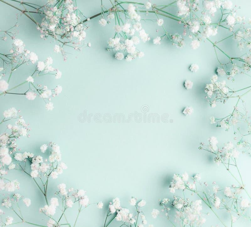 Kwiecisty skład z światłem, powiewne masy mali biali kwiaty na turkusowego błękita tle, odgórny widok, rama obrazy stock