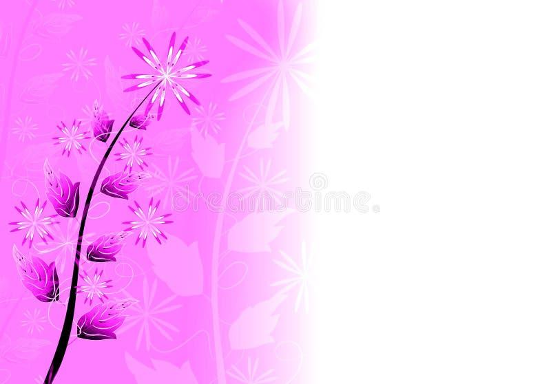 kwiecisty tło kwiat ilustracja wektor