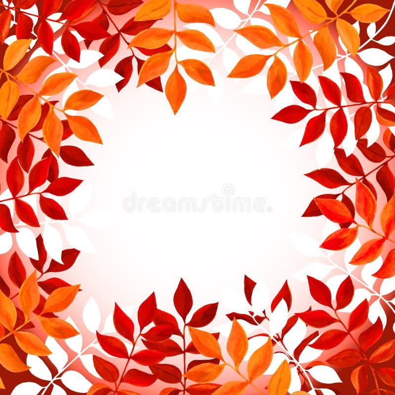 Kwiecisty tło z pomarańcze i czerwienią opuszcza i rozgałęzia się na białym tle ilustracja wektor