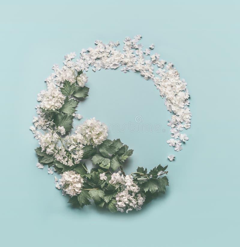 Kwiecisty wianek robić biali kwiaty, płatki i okwitnięcie, na pastelowym błękitnym tle Wiosna i lata pojęcie rama kwiecista wrobi zdjęcia stock