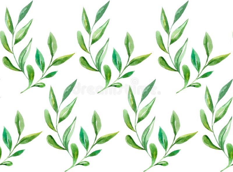 Kwiecisty wzór wodorosty obrazy royalty free