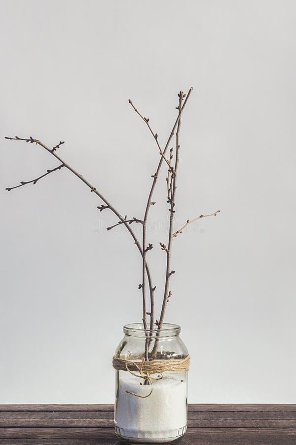 Kwitnąć rozgałęzia się w słoju z Easter jajkami jako wystrój obrazy royalty free