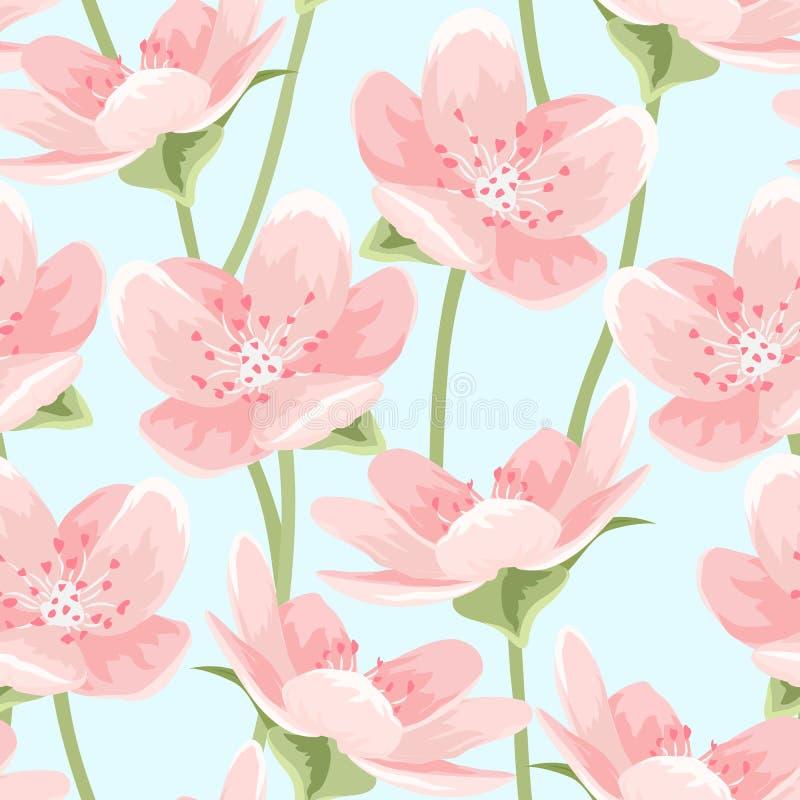 Kwitnąć Sakura magnoliowego czereśniowego okwitnięcie na błękicie ilustracja wektor