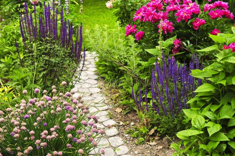 kwitnąca ścieżka ogrodowa obrazy stock
