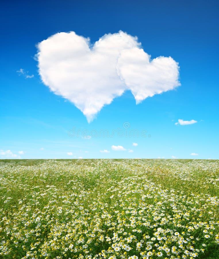 Download Kwitnąca Wiosny łąka, Niebieskie Niebo Z Bielem I Chmurniejemy W Postaci Serca Zdjęcie Stock - Obraz złożonej z środowisko, heart: 65226516