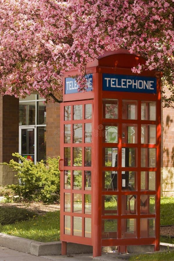 Kwitnący telefoniczny budka zdjęcie stock