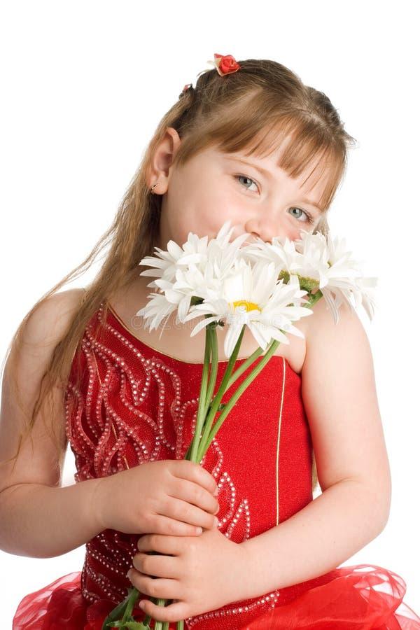 kwitnie dziewczyna biel fotografia royalty free