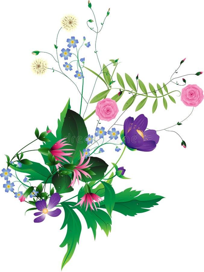 kwitnie dzikiego royalty ilustracja