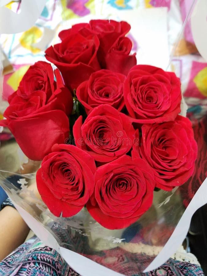 Kwitnie Flores natury floresrojas Rojo naturaleza obrazy stock