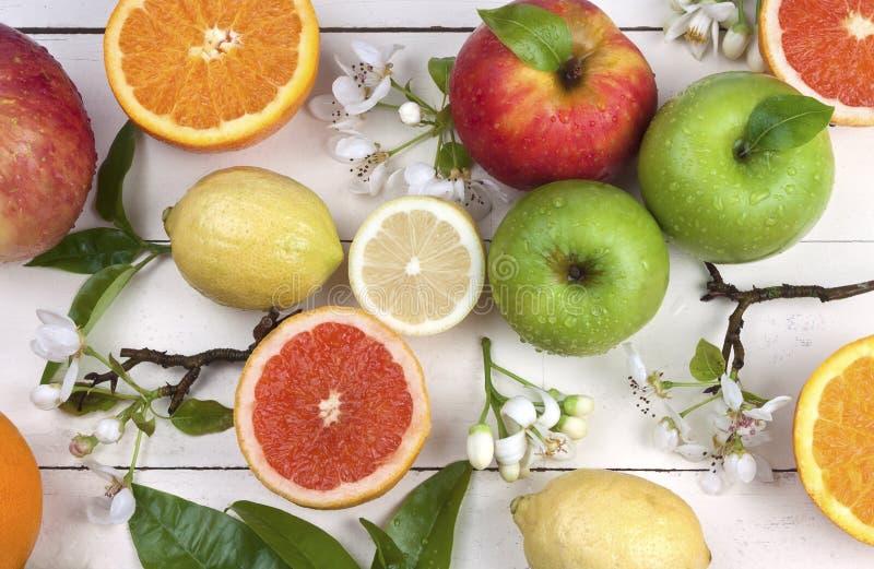 kwitnie owoc fotografia stock