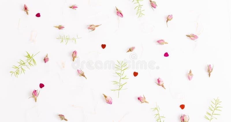 Kwitnie skład Rama robić wysuszony wzrastał kwiaty na białym tle zdjęcie stock