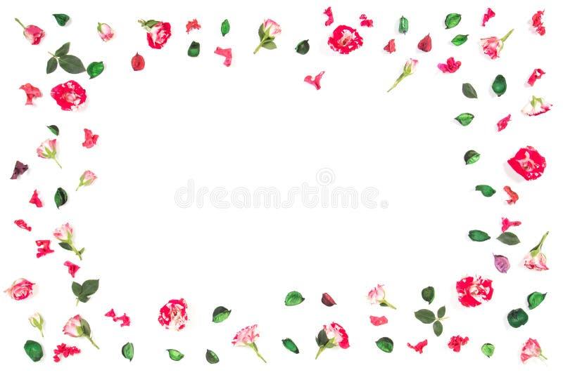 Kwitnie skład Rama robić świeże róże i suszący kwiaty Mieszkanie nieatutowy, odgórny widok obrazy royalty free