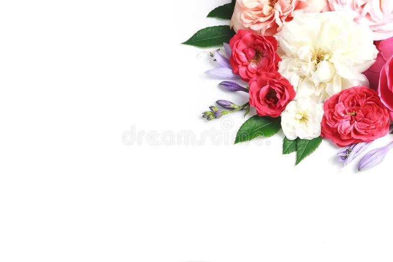 Kwitnie skład Rama robić wzrastał kwiaty na białym tle fotografia royalty free
