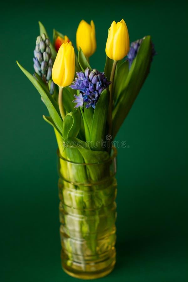 Kwitnie tulipany wazowych na zielonym tle zdjęcia stock