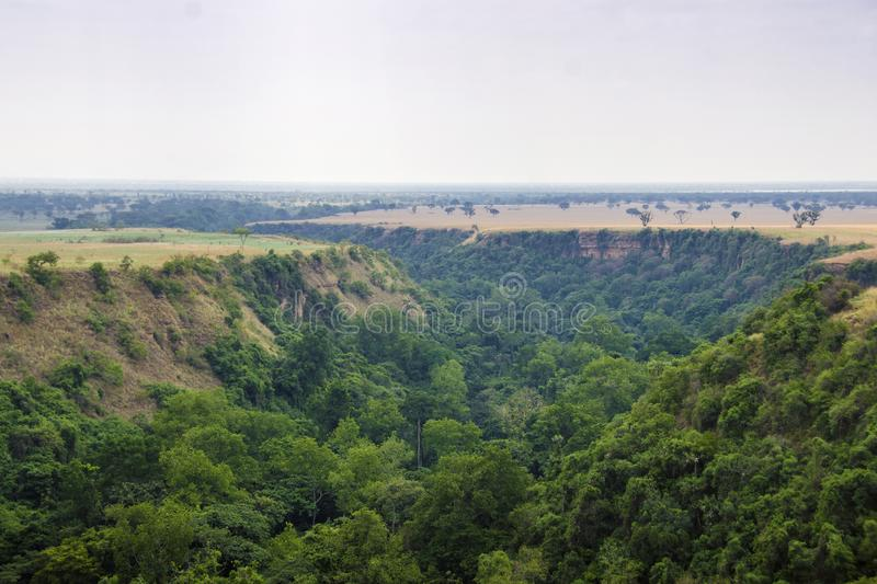 Kyambura Gorge. Is part of the Queen Elizabeth National Park QENP in Uganda. It is home to a variety of wildlife, including chimpanzees, the only primates in stock images