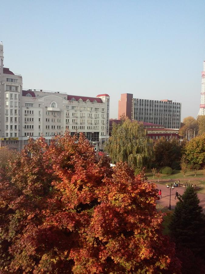 1 kyiv Украина осени стоковое изображение rf