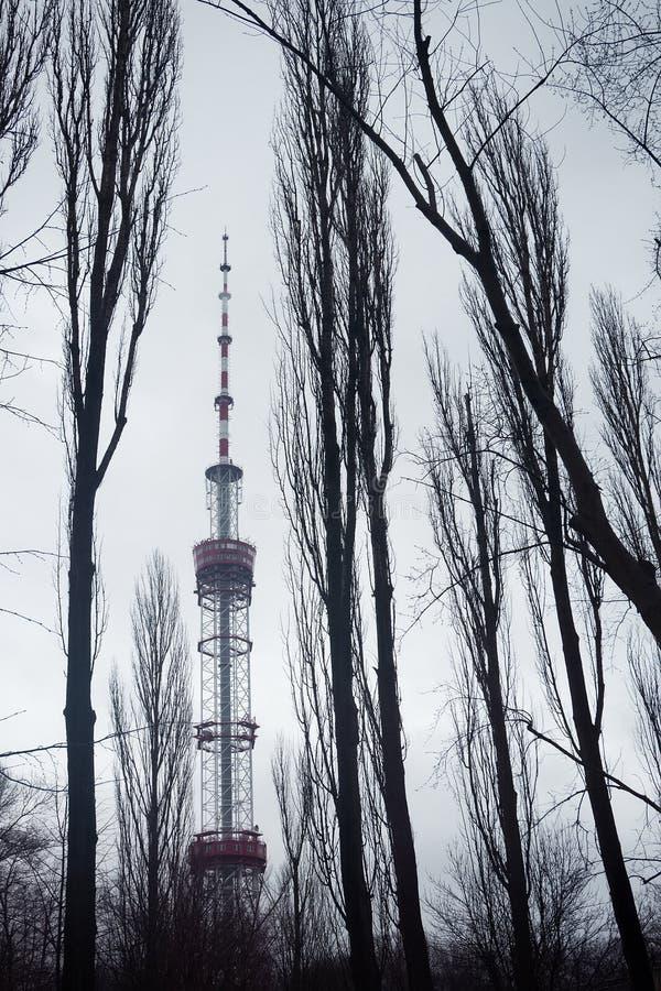 Kyiv televisiontorn i vinterogenomskinlighet royaltyfri fotografi