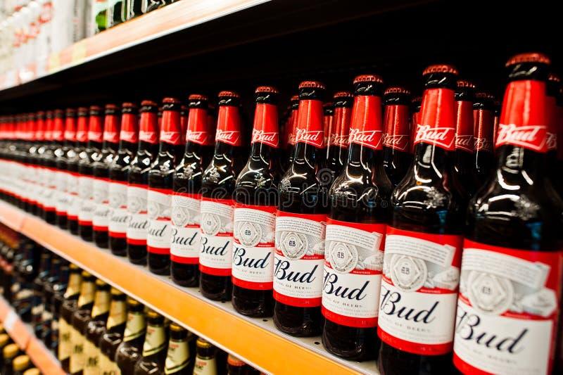 Kyiv, Ucrânia - 19 de dezembro de 2018: Garrafas de cerveja do botão em prateleiras em um supermercado Budweiser é uma cerveja pi foto de stock