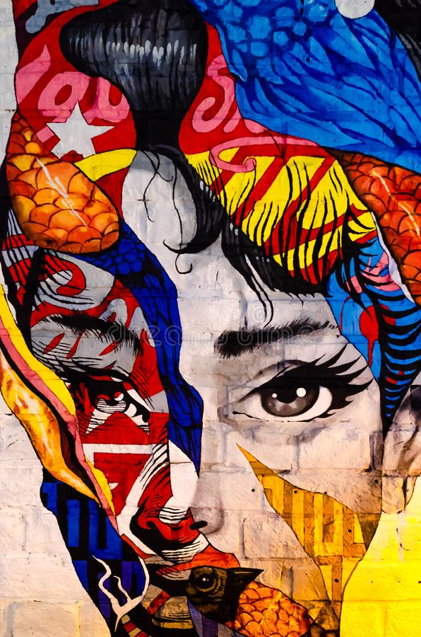 Kyiv, Ucrânia - 10 de junho de 2019 Barra de Warhol A cara da menina na parede de tijolo Arte moderna Retrato bonito da mulher Su ilustração stock