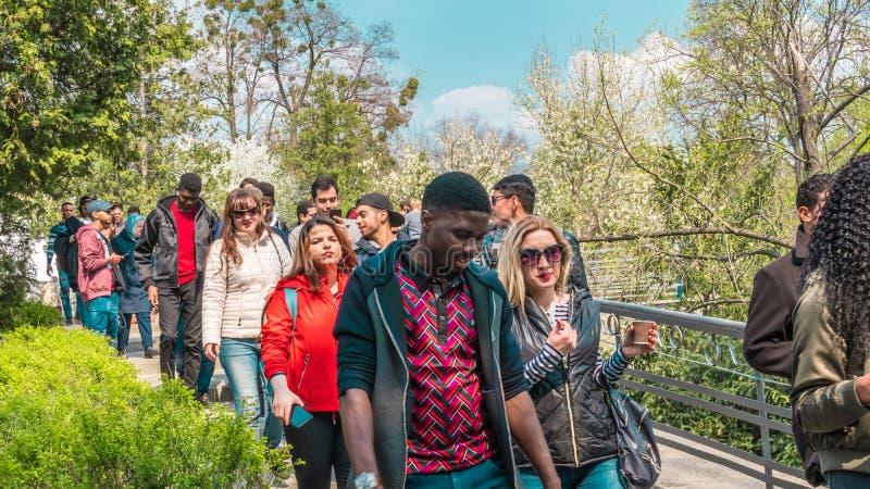 04 23 2019 - Kyiv, Ucr?nia Jardim bot?nico no centro da capital de Ucr?nia Os turistas andam no parque e tomam foto de stock