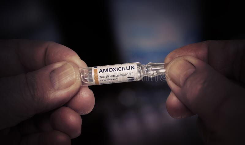 KYIV, UKRAINE-DECEMBER, 2019: Injektion av Amoxicillin glasampull royaltyfria bilder