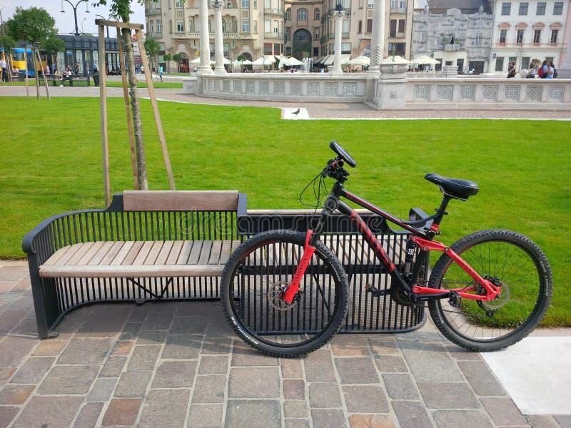 Kyla bänken och cykla från Arad Romania arkivbild