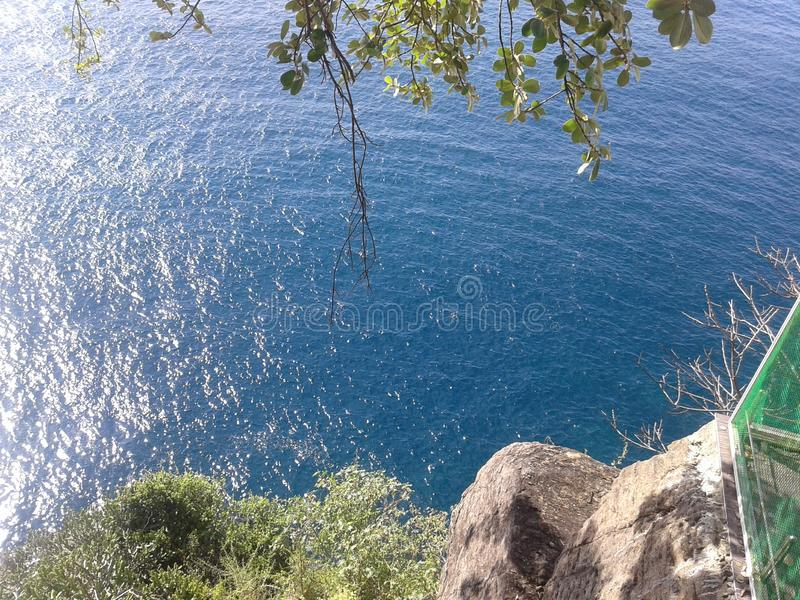 Kyla det blåa havet under träd royaltyfria foton