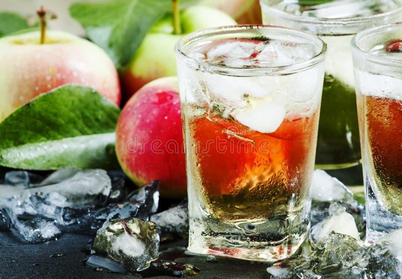 Kyla uppfriskande äppelmust med is och frukt, selektiv fokus arkivfoto