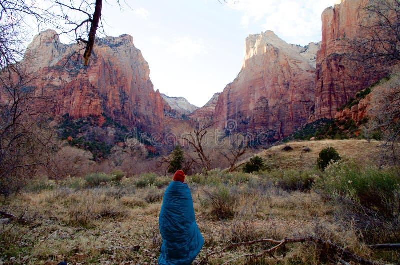 Kylig tidig vintermorgon i Zion National Park, Utah, USA royaltyfria bilder