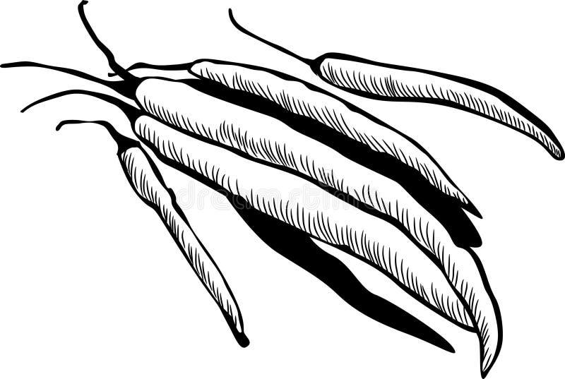 kyligt royaltyfri illustrationer