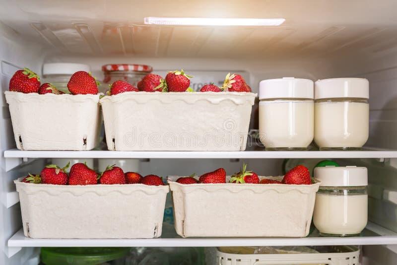 Kylskåphyllan med organiska saftiga jordgubbar i bio återanvända pappers- askar och hemlagade naturliga mjölkar yoghurt Fylld kyl arkivbild