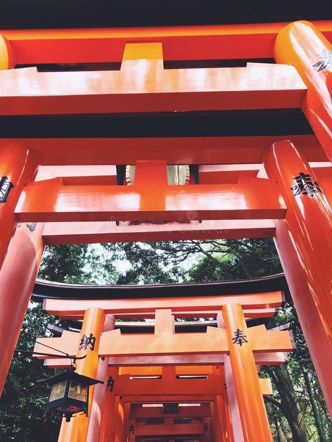 kyoto fotos de stock royalty free