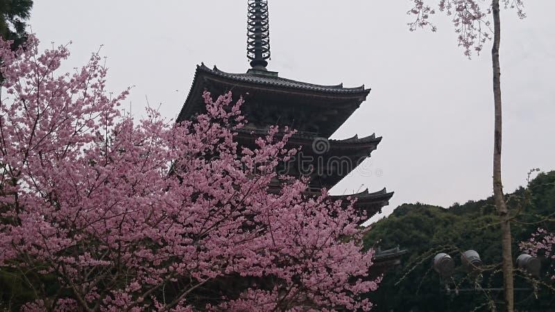 kyoto foto de stock