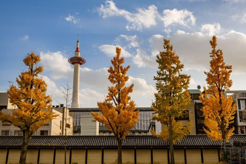 Kyoto city, Japan. Autumn season of landmark structure Kyoto Tower stock image
