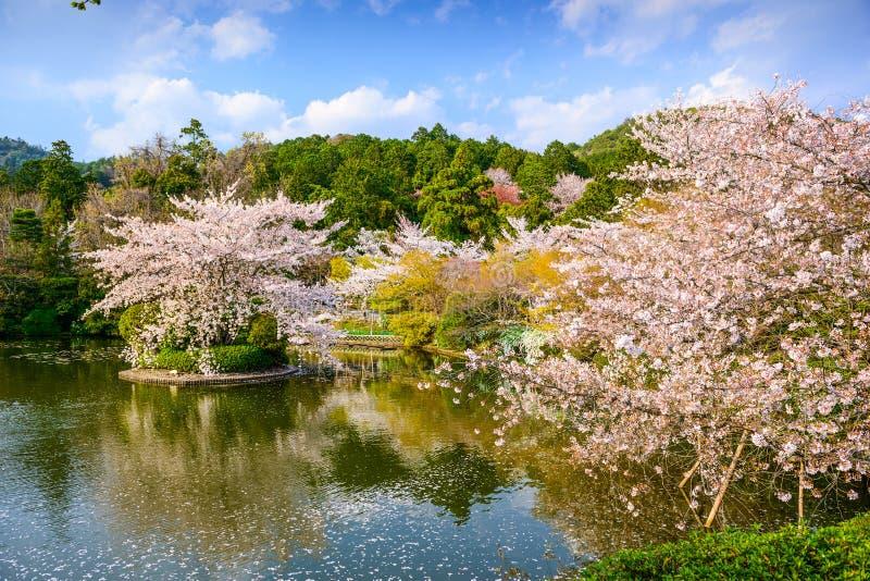 Kyoto in de Lente royalty-vrije stock foto