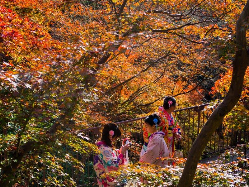KYOTO, EL 8 DE DICIEMBRE: Los turistas que visten el kimono toman imágenes en Kiy fotos de archivo libres de regalías