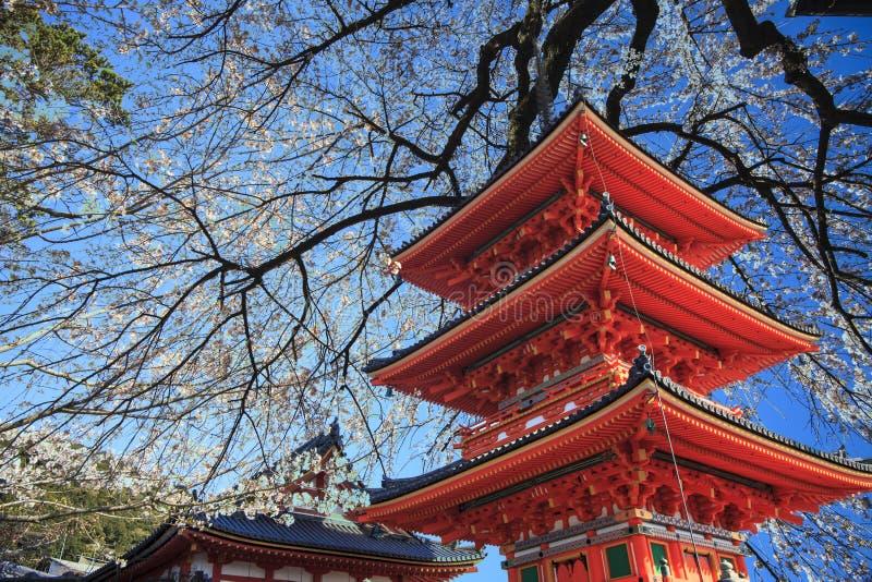 Kyoto, Giappone al tempio di Kiyomizu-dera durante la caduta fotografia stock