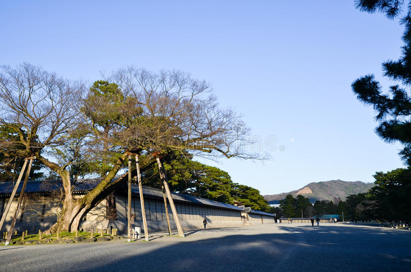 Kyoto Gyoen Garden and Mt. Daimonji in the Evening, Kyoto. Japan royalty free stock image