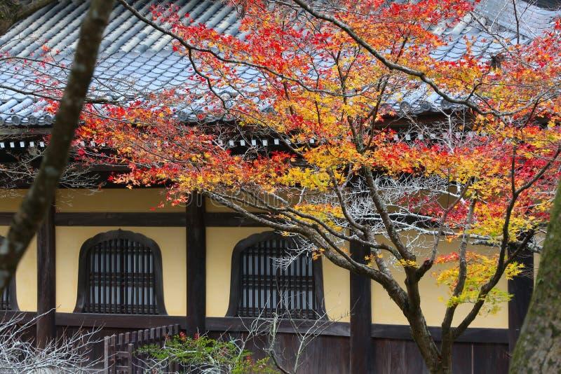 Kyoto-Herbst lizenzfreie stockfotografie