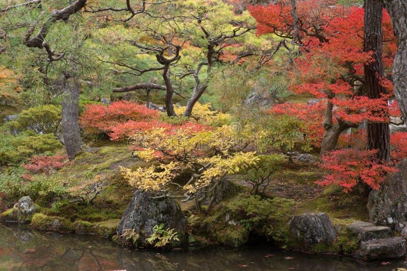 Outono em Kyoto, Japão fotografia de stock