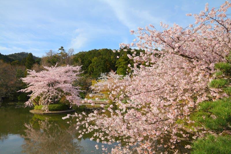Kyoto, Japão fotografia de stock royalty free