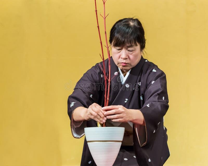 Kyoto, Japón - 18 de noviembre de 2013: Japonés mayor no identificado wo foto de archivo libre de regalías