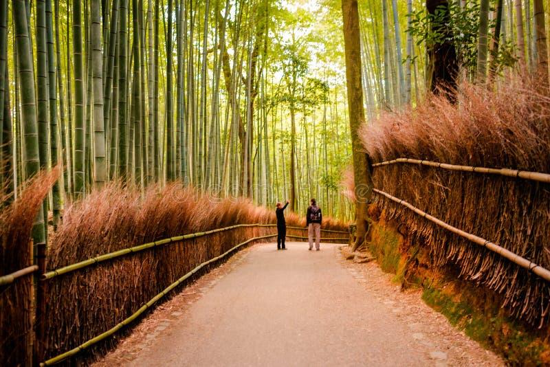 KYOTO, JAPÓN - 12 de noviembre: La trayectoria al bosque de bambú en Kyoto, foto de archivo